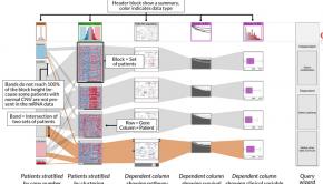 A screenshot from biomolecular visualization framework StratomeX