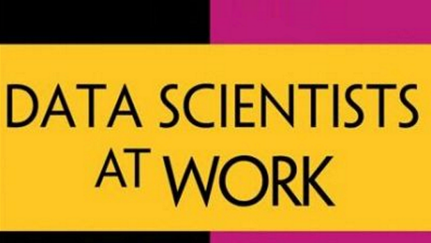Data Scientists at Work Book Cover