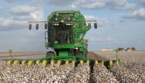 Farming with the Internet of Things