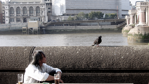 A pigeon in London