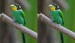 JPEG compression loss